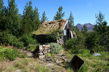 social history: A mountain cabin in disrepair surrounded by growth and trees