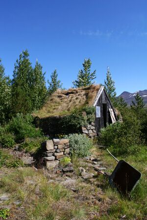 disrepair: A mountain cabin in disrepair surrounded by growth and trees, mountaintops in the distance Stock Photo