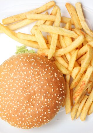 Hamburger and fries on white, on white dish, very tasty looking Stock Photo - 3393561