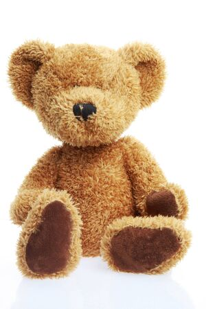 stuffed teddy bear isolated on white shot in studio Stock Photo