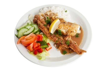 A dish of fried fish and rice with the recomended amount of food for an average sized person.  Stock Photo - 6827393