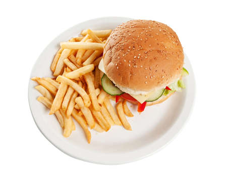 Hamburger with french fries on a dinner plate Stock Photo - 6827499