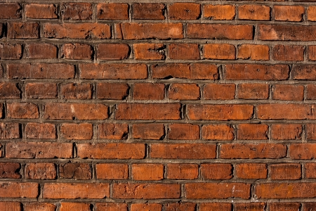 red brick wall Stock Photo - 14590705
