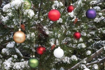 cropped shot of a christmas decorated pine tree covered in snow Stock Photo - 6827529