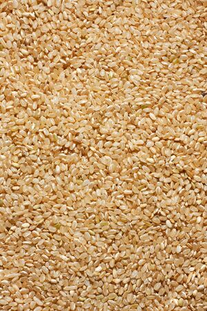 Fullframe shot of brown rice, great for backgrounds and health oriented projects Stock Photo - 9857034