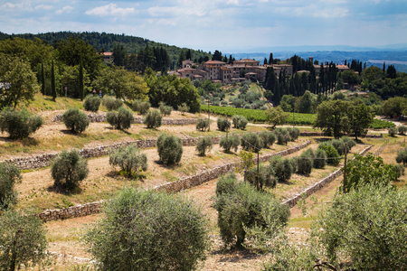 chianti: Castellina in chianti Italy, shot in summer