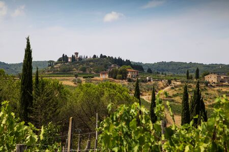 farmhouses: Farmhouses in the hills of Tuscany in Italy