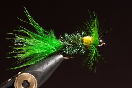 wooly: Green wooly bugger trout fly in the wise after being tyed
