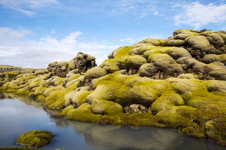 lava field: Moss grown lava field and small stream in southern Iceland