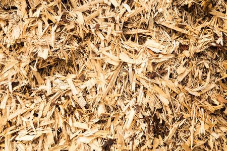 wood shavings: pile of wood shavings great detail, fantastic for backgrounds