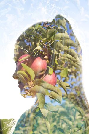 Double exposure of a female face and appletrees photo