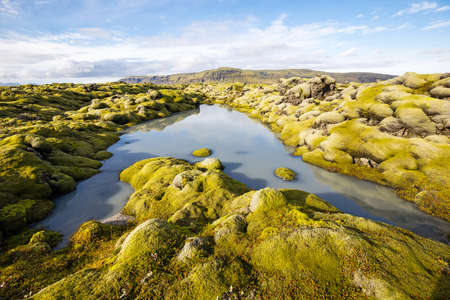 lava field: Moss grown lava field in southern Iceland with a small stream flowing through it.