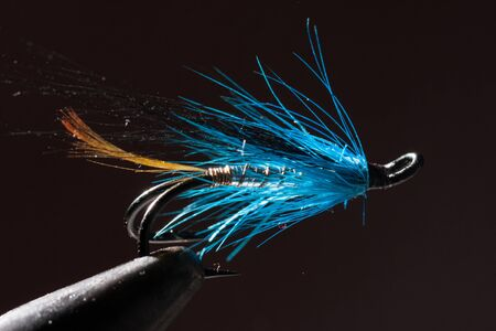 volar: Azul y plata mosca para la pesca con mosca en un atado de moscas racional