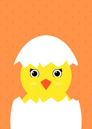 Cute baby chicken in an egg