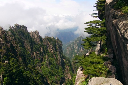 world natural heritage: One of the world natural and cultural heritage of China Huangshan