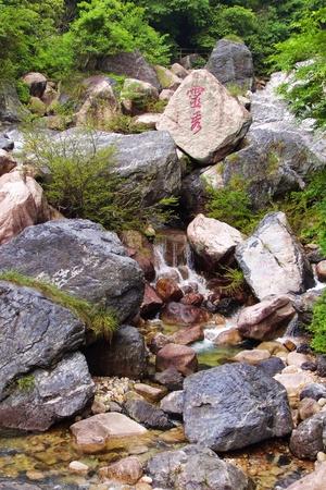 jade plant: Chinese Jadeite Valley Editorial