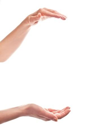 mains ouvertes: Mains de belle femme ouvrent. Isol� sur fond blanc