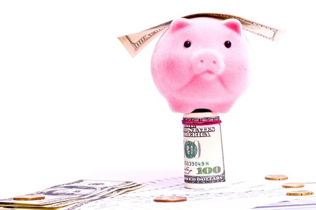 a pink pig stands on the dollars isolated on white photo