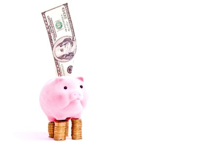 a pink pig stands on the coins with one hundred dollars isolated on white photo