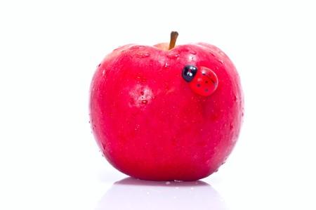 The toy ladybug on fresh red apple isolated on white Stock Photo - 7369108