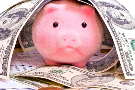 Pink pig in house from dollars isolated on white photo