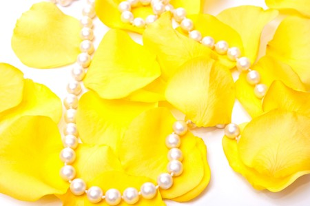 Yellow roses petals and white pearls isolated on white background photo