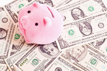 a pink pik sits on a money. Focus on pig photo