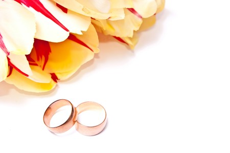 yellow with red tulips and two wedding rings. On white Stock Photo - 7368521