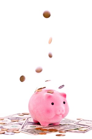 a pink pig under the falling money isolated on white photo