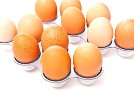 rows from eggs isolated on white background Stock Photo - 7373872