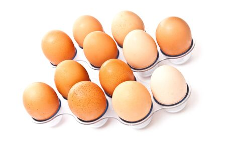 Rows from eggs isolated on white background Stock Photo - 7373011