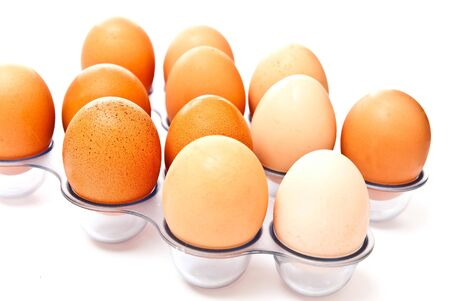rows from eggs isolated on white background  Stock Photo - 7636952
