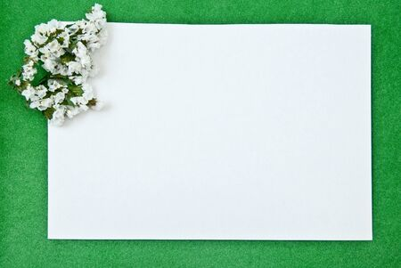 White paper blank on green with flowers design  photo