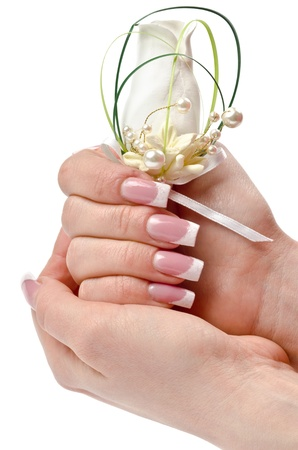 Female hands with perfect manicure and flowers - beauty treatment Stock Photo - 13098856