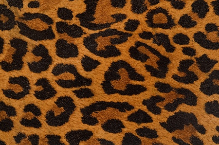 A printed representation of the beautiful markings of a leopard skin Stock Photo