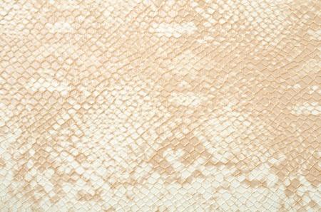 Seamless texture background white snake leather  photo