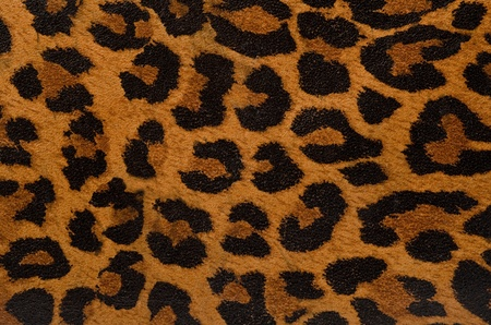 mottled skin: A printed representation of the beautiful markings of a leopard skin Stock Photo