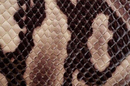 Textured background of genuine leather in snake skin pattern photo