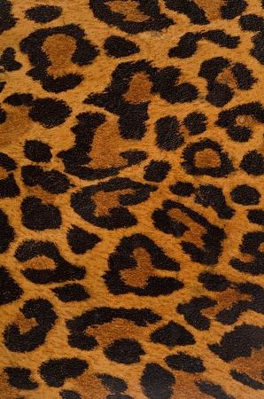 huella animal: Una representaci�n impresa de las bellas marcas de una piel de leopardo Foto de archivo