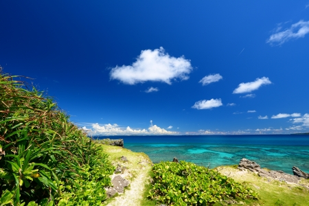Beautiful subtropical Okinawa Stock Photo - 17340980