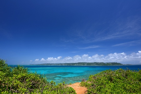 Beautiful subtropical Okinawa Stock Photo - 17560839