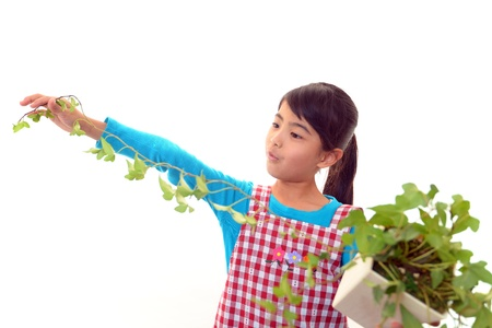asian house plants:  The girls who take care of the plant  Stock Photo