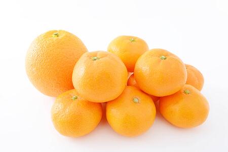 orenge: Fresh fruits Stock Photo