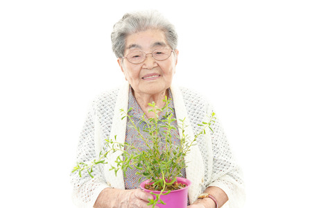 Portrait of old woman on a white background photo