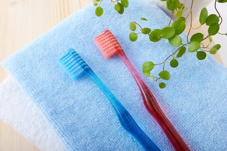 necessities: Toothbrush Stock Photo