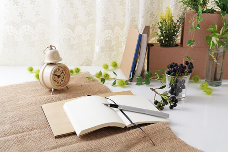 business matter: Notebooks and pen