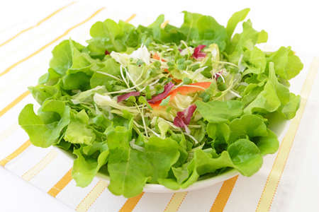Fresh and healthy vegetable salad.