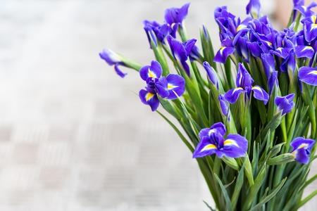 purple irises: Bouquet from purple irises with copy space