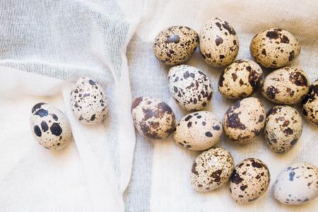 huevos de codorniz: huevos de codorniz de cerca sobre fondo blanco textil