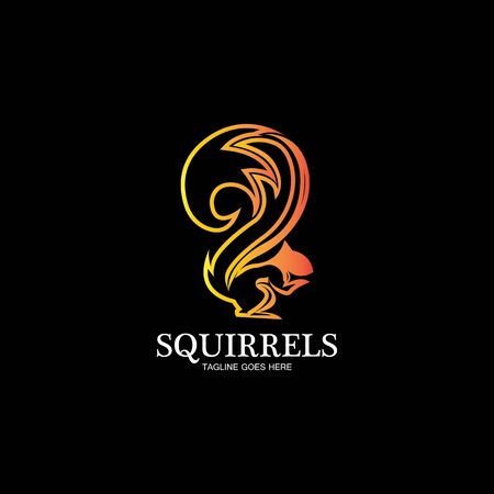 creative squirrel animal logo design icon symbol illustration-vector